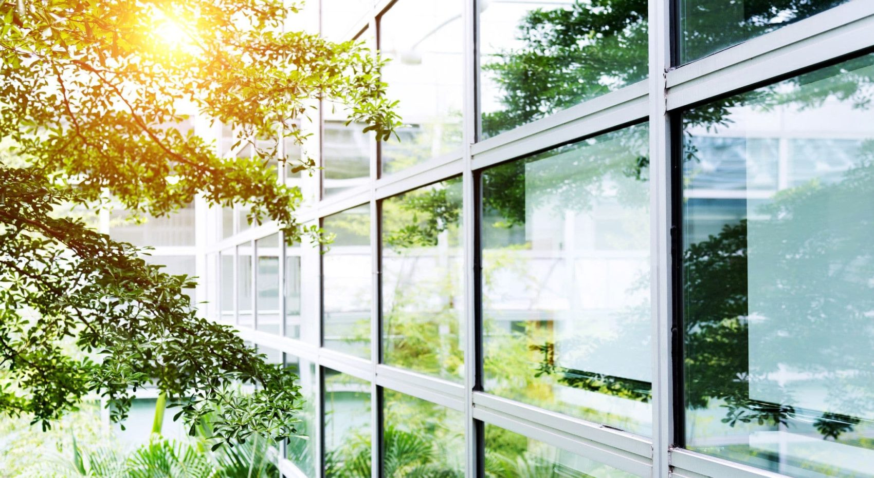 10 Fantastic Ideas for Considering Green Buildings